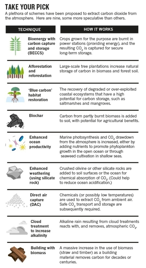 Emissions reduction: Scrutinize CO2 removal methods | plant cell genetics | Scoop.it