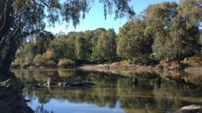 Irrigators ignored in Murray-Darling endangered listing - ABC Local | Geography | Scoop.it