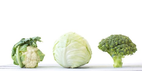 5 of the Most Nutritious Vegetables on the Planet | zestful living | Scoop.it