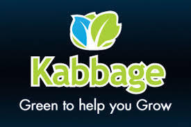 Kabbage Cash Advance Funding for Online Merchants | Free Open Source Apps and Tips for SMBs | Scoop.it