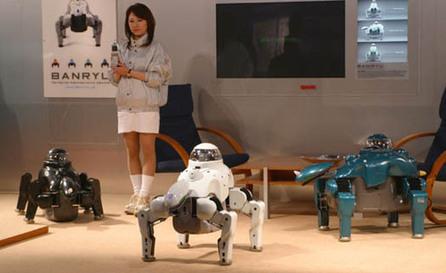 Le mag de la maison intelligente » Un robot domestique pour la sécurité de la maison | Une nouvelle civilisation de Robots | Scoop.it