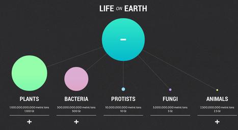 The YouTube Of Data Viz Feeds You The Web's Best Infographics   The Creators Project   Arte y nuevas tecnologías   Scoop.it