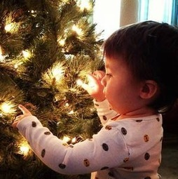Grand Photo of the Week: O, Christmas Tree | Fun Facts: Pre Lit Artificial Christmas Trees Walmart Has | Scoop.it