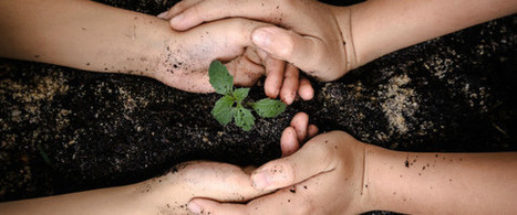 11 Invaluable Life Lessons Kids Learn From Gardening | School Gardening Resources | Scoop.it