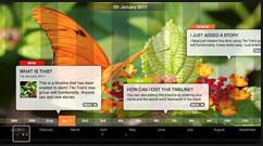 Beautiful web-based timeline software   Edtech PK-12   Scoop.it