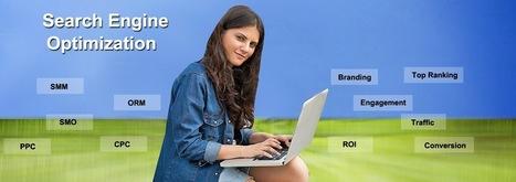 SEO Service Delhi and Noida | SEO Service | Scoop.it