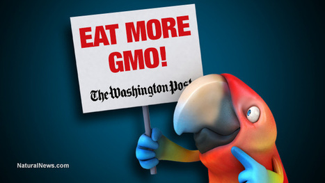 Corrupt federal government now using your taxpayer dollars to fund GMO propaganda campaigns that enrich Monsanto | Liberty Revolution | Scoop.it