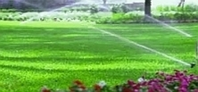 Landscaping Services In Waco, TX - Picture Perfect Lawn & Landscape | Picture Perfect Lawn & Landscape | Scoop.it