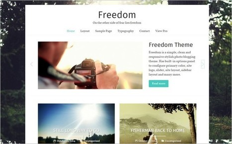 Freedom - A Perfect Free WordPress Photo Blogging Theme | Free & Premium WordPress Themes | Scoop.it