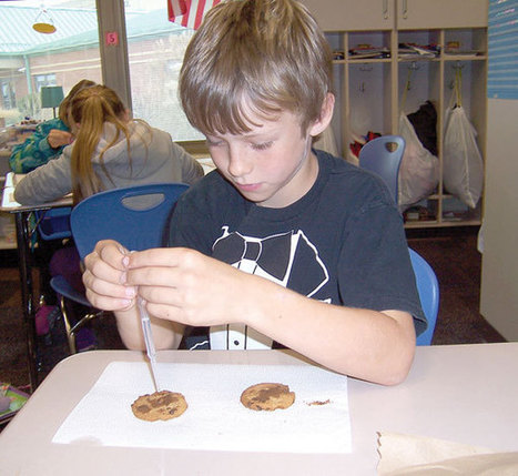 Cookies and the earth's surface - Bellefontaine Examiner | Weathering and Erosion | Scoop.it