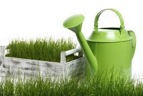 Need a lawn maintenance service in Jacksonville, FL? Call DanScapes, Inc | Need a lawn maintenance service in Jacksonville, FL? Call DanScapes, Inc | Scoop.it