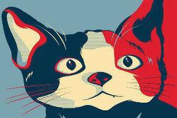 'Candigato Morris' te da recetas originales para tu mascota | Paz y bienestar interior para un Mundo Mejor | Scoop.it