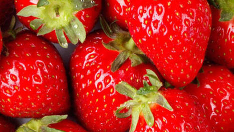 """New fruit tops """"Dirty Dozen"""" list of most contaminated produce 
