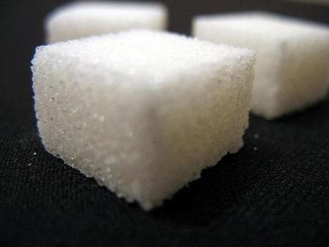 Study: Aspartame, saccharin cause greater weight gain than sugar | Sugar the sweet poison | Scoop.it