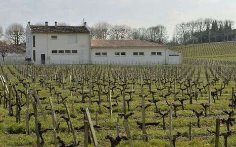 Pesticides près des écoles : interdits pour protéger la santé des enfants | Agriculture en Pyrénées-Atlantiques | Scoop.it