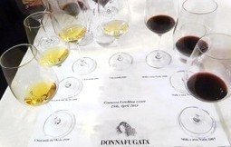 Donnafugata in tripla verticale: cosa preferire tra Chardonnay, Nero d'Avola e Pantelleria | Wine, history and culture... | Scoop.it