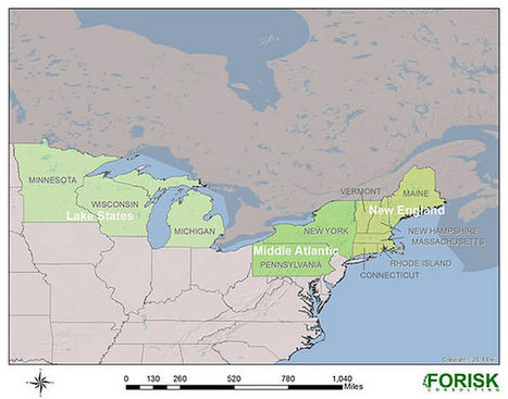 Timberland Investment Regions and Considerations in the U.S. North | Timberland Investment | Scoop.it