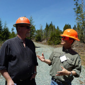 Research points to bright future for biomass | Timberland Investment | Scoop.it