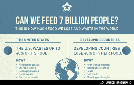 Infographic: How Much Food Nearly 7 Billion People Waste | Sustainable Futures | Scoop.it