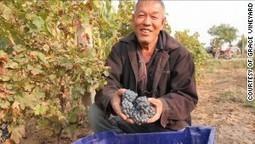 Some Coca-Cola with your merlot? 5 Chinese wine myths debunked | Chine et Vins Français: Une affaire de goût en devenir | Scoop.it