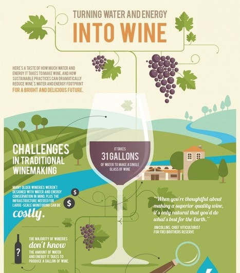 How Much Water & Energy It Takes to Make Wine | Grande Passione | Scoop.it