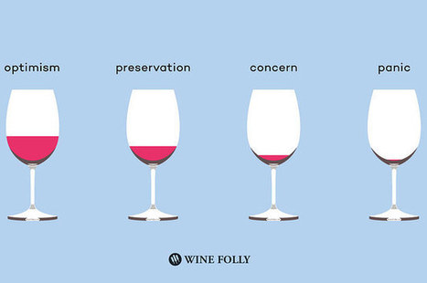 8 Profound Truths Only Wine Drinkers Will Understand | Wine General | Scoop.it