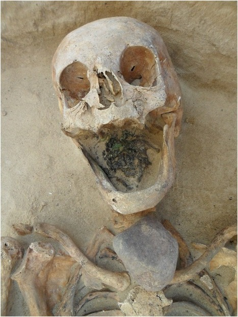 New Clues Point To The Origin Of Poland's Mysterious 'Vampires' | Ancient Egypt and Nubia | Scoop.it