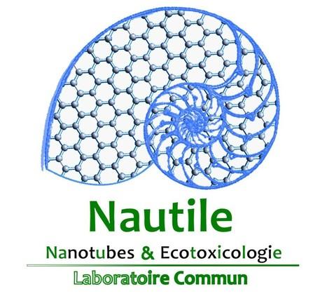 NAUTILE, premier laboratoire commun public et privé de recherche consacré à l'étude de l'impact des nanotubes de carbone dans l'environnement | Actualité des laboratoires du CNRS en Midi-Pyrénées | Scoop.it