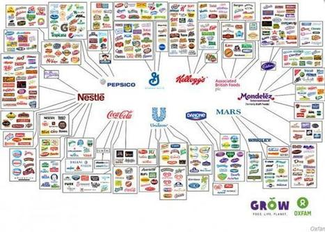These 10 companies control everything you buy | Real Food Rebellion | Scoop.it