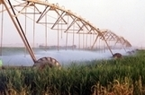 FAO: Success in hunger fight hinges on better use of water | Broad Canvas | Scoop.it