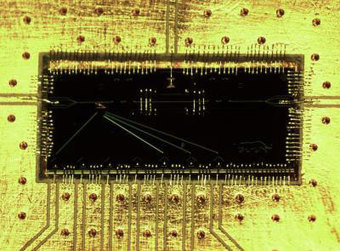 Breakthrough offers new route to large-scale quantum computing - Nanowerk LLC | leapmind | Scoop.it