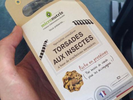 Caen [Insolite] À Caen, quatre étudiants créent des pâtes... aux insectes ! | Monde Agricole | Scoop.it