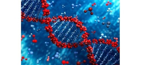 How Will Synthetic Biology Change the Way We Live? | Arizona SciTech | shubush digital | Scoop.it