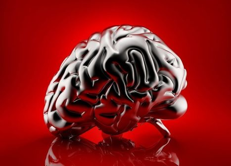 6 Ways to use Neuroscience to Improve Your Team and Business | New Leadership | Scoop.it