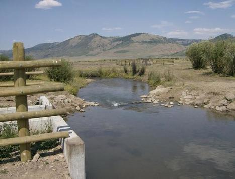 How An Unlikely Partnership Is Working To Bring Back A Native Idaho Trout - Boise State Public Radio | Fish Habitat | Scoop.it