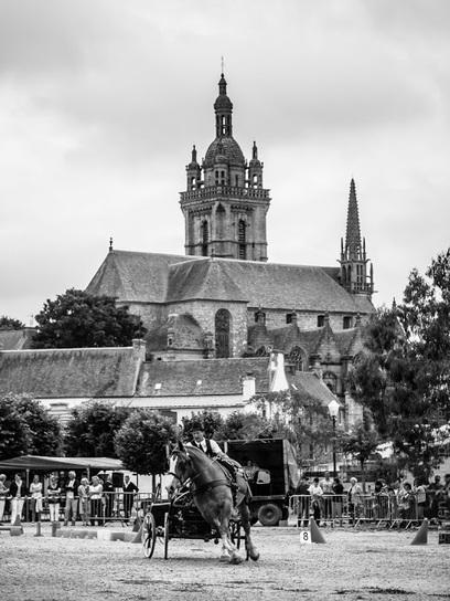 balade photo en Finistère, Bretagne et...: cheval breton - attelages à Saint-Thégonnec (10 photos) | photo en Bretagne - Finistère | Scoop.it