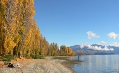 Wanaka: Not part of UFB project, but still fibred up - TelcoReview NZ | UFB New Zealand | Scoop.it