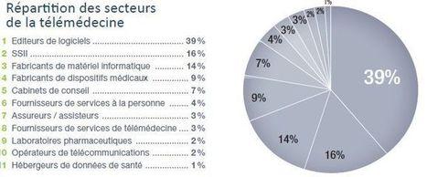 Télémédecine en France : la cartographie du Syntec Numérique - E ... | pierreprigent@hotmail.com | Scoop.it