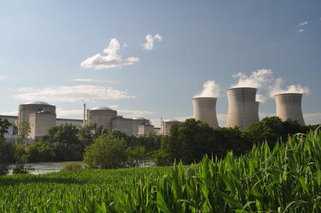 Pris à défaut par un horticulteur, EDF lance la représaille juridique : Poubelle la vie !?   Le Côté Obscur du Nucléaire Français   Scoop.it