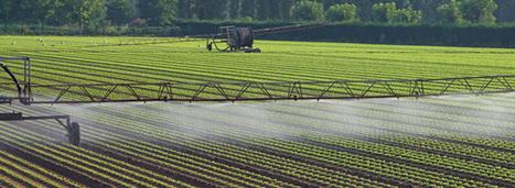 Réutilisation des eaux usées pour l'irrigation : le CGDD identifie ... - Actu-environnement.com   CACG - Water &Territorial Devloppment -----Eau & Développement Territorial   Scoop.it