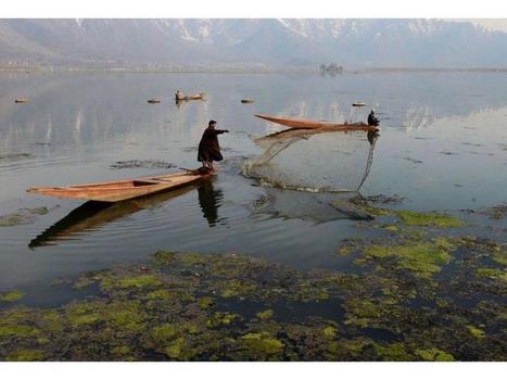 Agua para un mundo sostenible - La Estrella de Panamá | Agua | Scoop.it