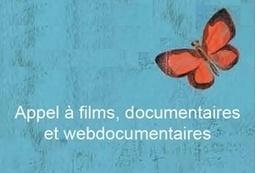 Appel à films documentaires et webdocumentaires pour la 32e édition du FIFE Île-de-France qui se déroulera du 3 au 10 février 2015 | Brand Transmedia | Scoop.it