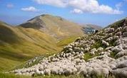 Sibillini & Le Marche - Self-guided walking holiday Italy - Walking holiday info | Le Marche another Italy | Scoop.it