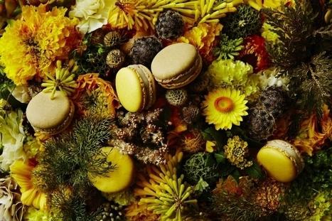 La Corse s'invite dans les plus belles cuisines françaises | ATABULA | Gastronomie Française 2.0 | Scoop.it