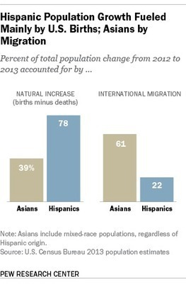 U.S. Hispanic and Asian populations growing, but for different reasons | Edison High - AP Human Geography | Scoop.it