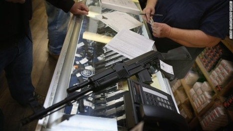 Poll: Majority wanted background checks to pass Senate | Government AND Law skinny 3a | Scoop.it