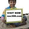 SOC 308 ASH Course Tutorial (soc308.com)