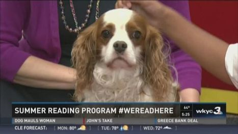 Madison's report: Why is there a dog in the library? - WKYC-TV | Library world, new trends, technologies | Scoop.it
