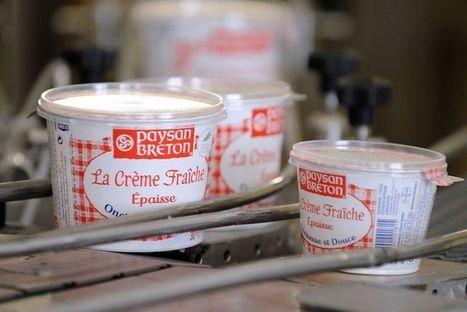 Pour aider ses producteurs laitiers, Paysan Breton veut se diversifier | Branding News & best practices | Scoop.it