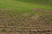 Die fachgerechte Bewertung von Bodenfunktionen | Austrian Standards News | Scoop.it